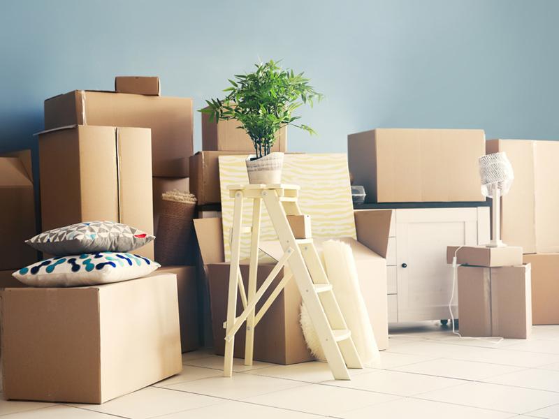 終活プラザ 遺品整理、引っ越しのお手伝い